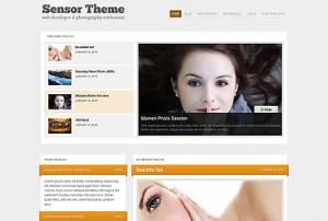 Wordpress Sensor theme by WPzoom