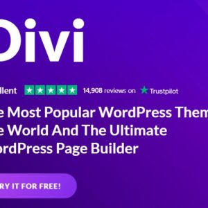WordPress Divi Theme