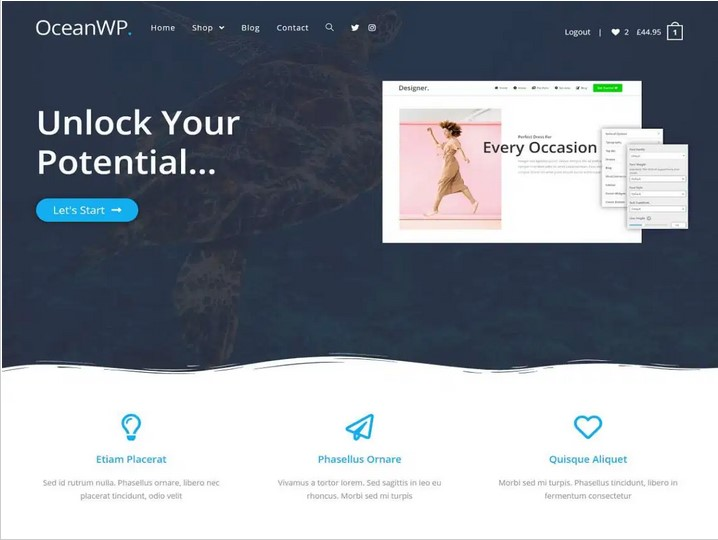 Read more about the article OceanWP WordPress Theme